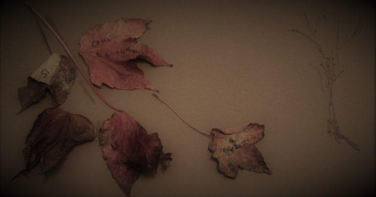 Sassi, foglie e poesia. Leggere Ungaretti e ridurre all'osso