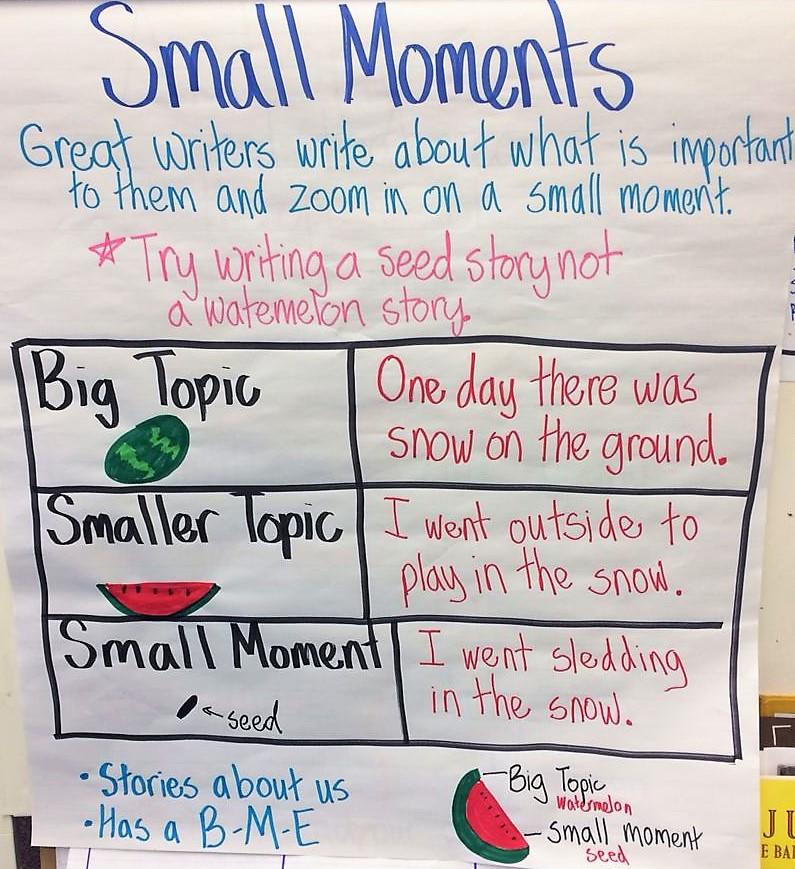 """""""Quella volta che…"""": albi illustrati come testi modello di small moments"""